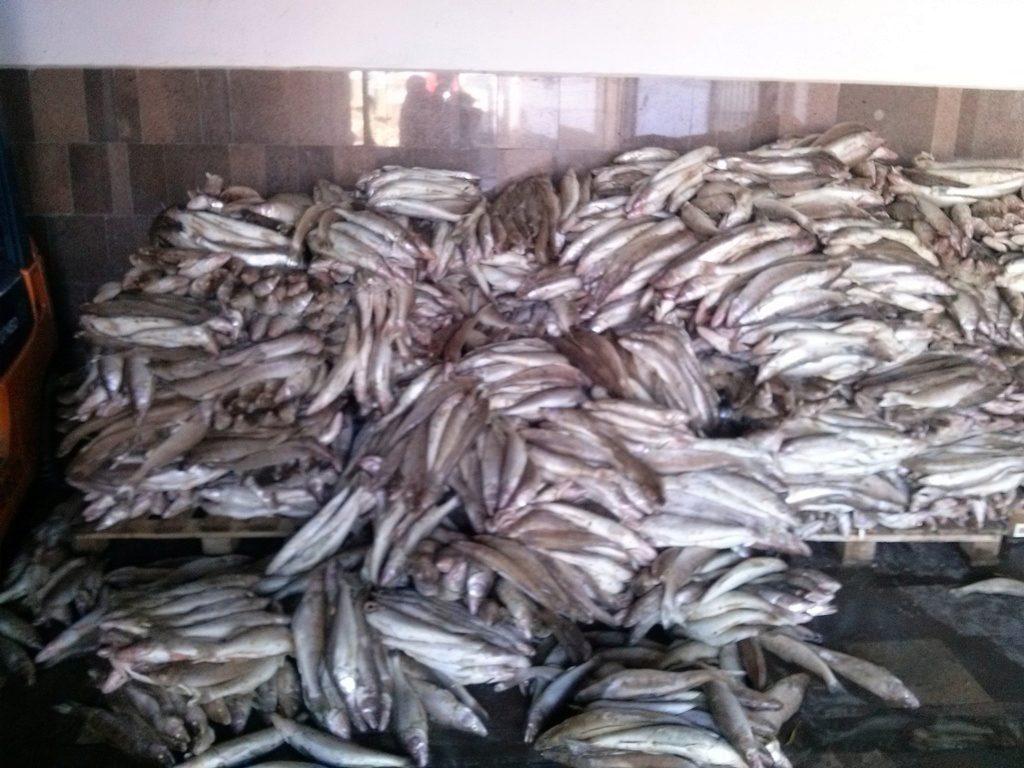 рыболовная барахолка краснодарский край